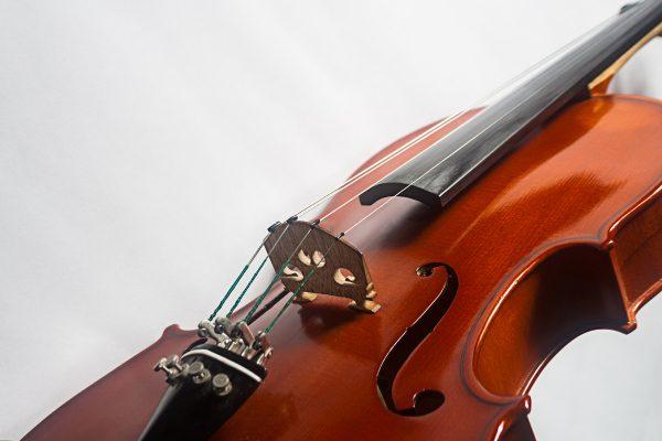 Violon-3000
